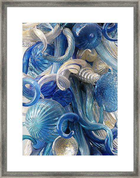 Diaphanous Nudibranch Framed Print