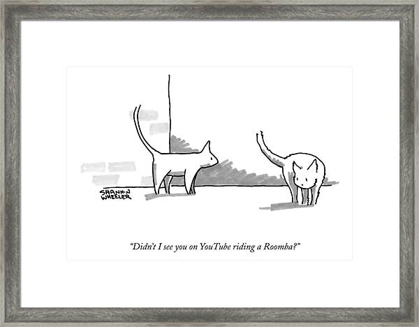 Didn't I See You On Youtube Riding A Roomba? Framed Print