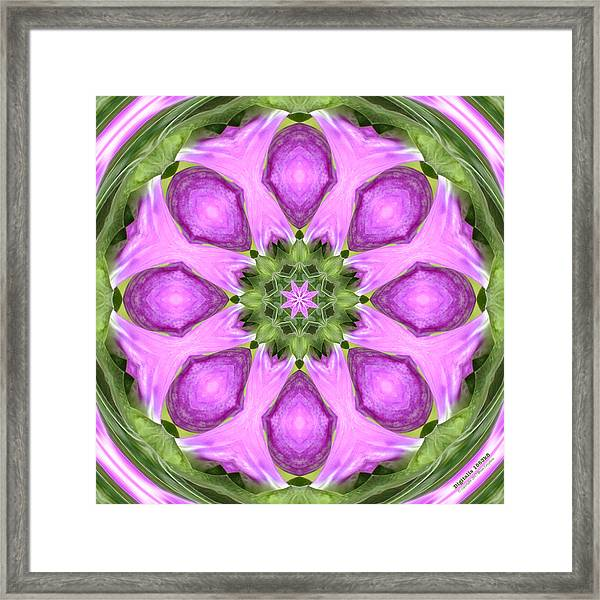 Framed Print featuring the digital art Digitalis 1563k8 by Brian Gryphon
