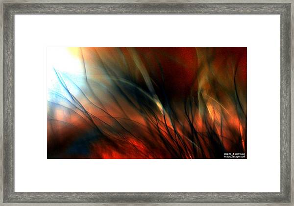 Distant Fire Framed Print by JCYoung MacroXscape