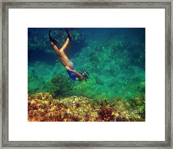 Diving For Shells Framed Print