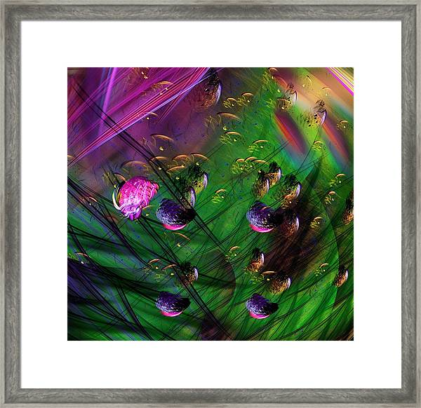 Diving The Reef Series - Hallucinations Framed Print