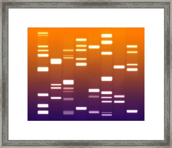 Dna Purple Orange Framed Print