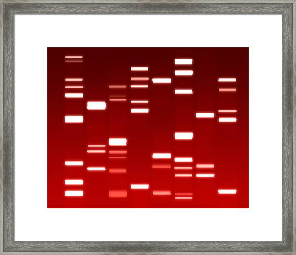 Dna Red Framed Print