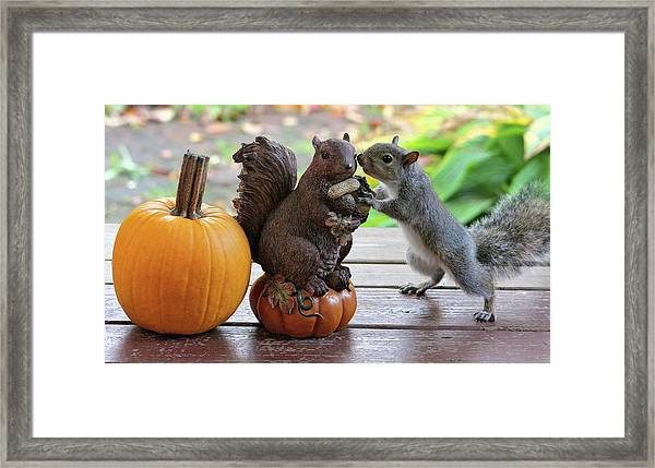 Do You Want To Share? Framed Print