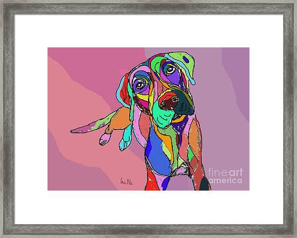 Dog Sketch Psychedelic  01 Framed Print