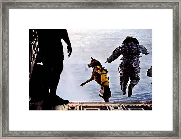 Military Working Dog Framed Print