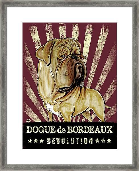 Dogue De Bordeaux Revolution Framed Print