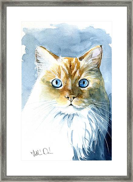 Doll Face Flame Point Himalayan Cat Painting Framed Print