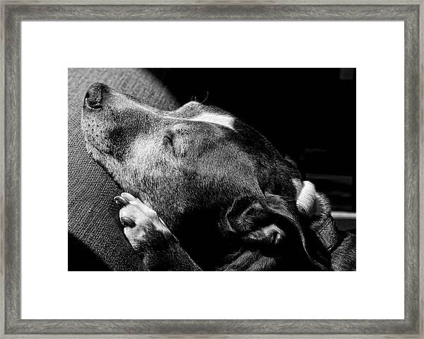 Dolores Sunbathing Framed Print