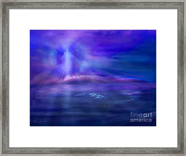 Dolphin Dreaming Framed Print