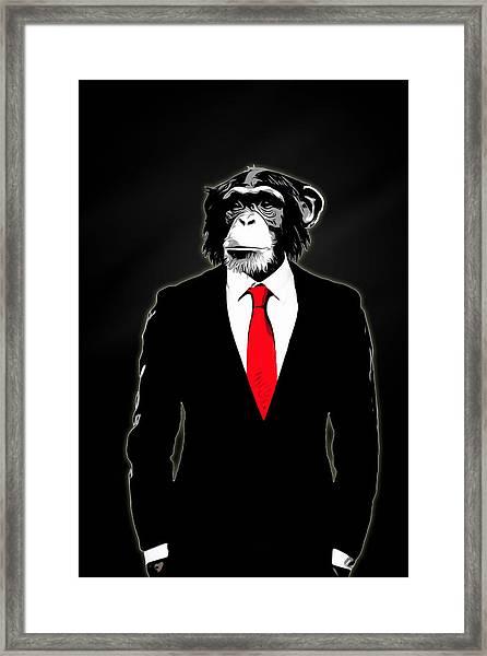 Domesticated Monkey Framed Print