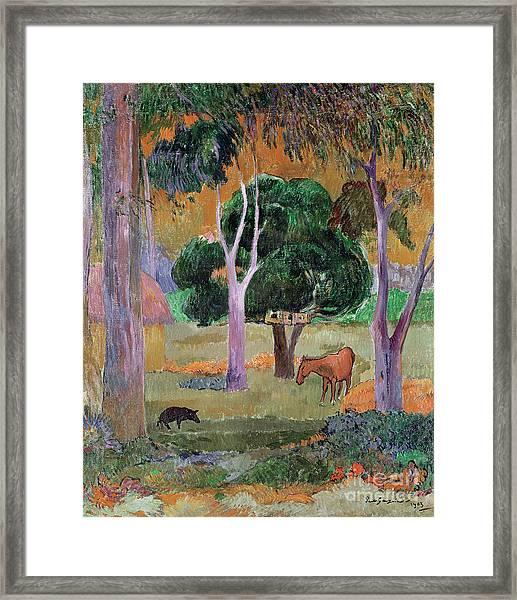 Dominican Landscape Framed Print