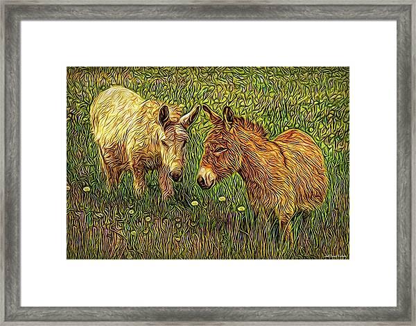Donkey Confidential Framed Print