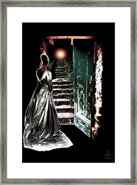 Door Of Opportunity Framed Print