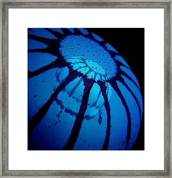 Double Jelly Framed Print
