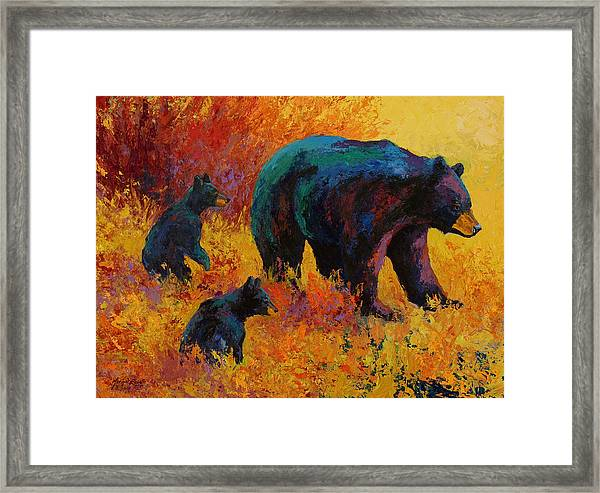 Double Trouble - Black Bear Family Framed Print