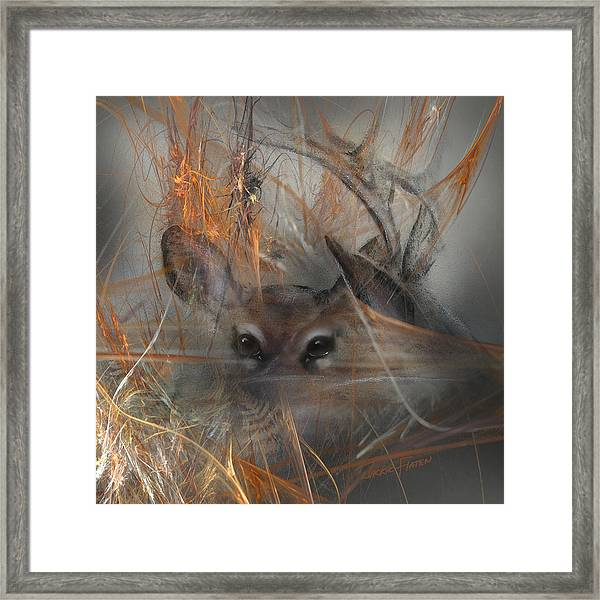 Double Vision - Look Close Framed Print