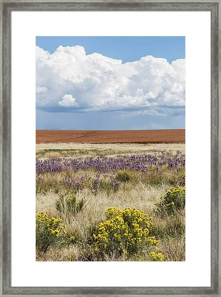 Dove Creek Fall Framed Print