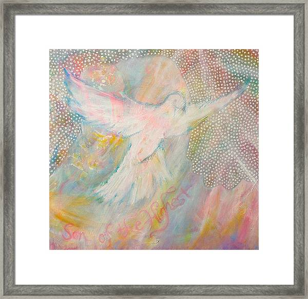 Dove Detail From Immaculate Conception Framed Print