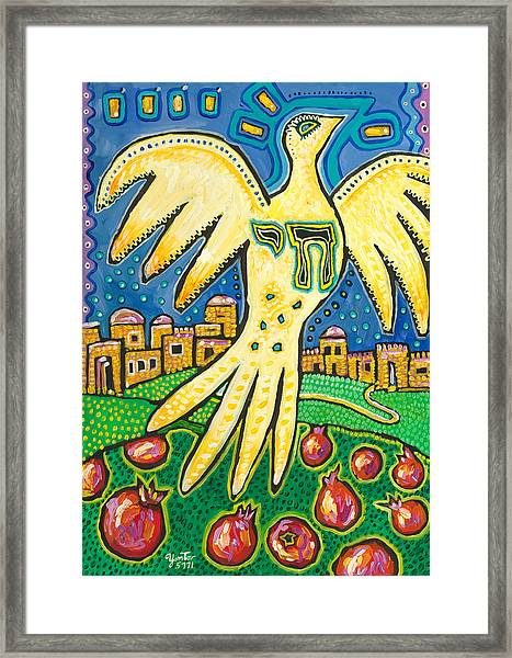 Dove Over Jerusalem Framed Print