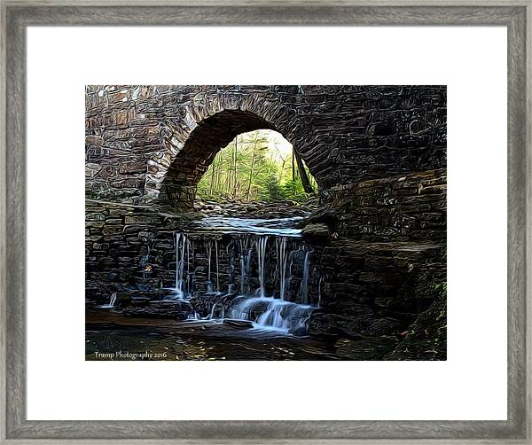Down In The Park Framed Print