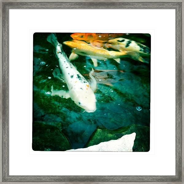 Downstream 2 Framed Print