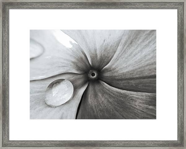 Downward Spiral Framed Print