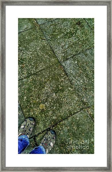 Downward Views #001 Framed Print