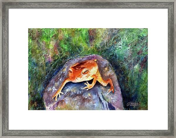 Dozing On A Rock Framed Print
