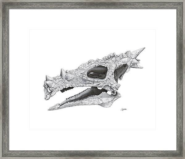 Dracorex Hogwartsia Skull Framed Print