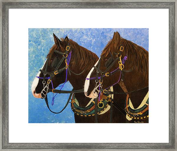 Framed Print featuring the photograph Draft Horse Portrait by Dee Browning
