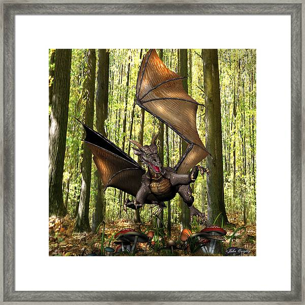 Dragon 'edwin' - Dropping In For A Snack Framed Print