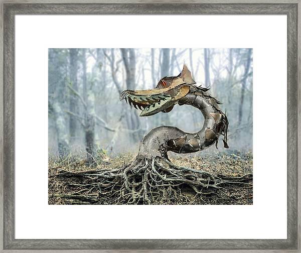 Dragon Root Framed Print