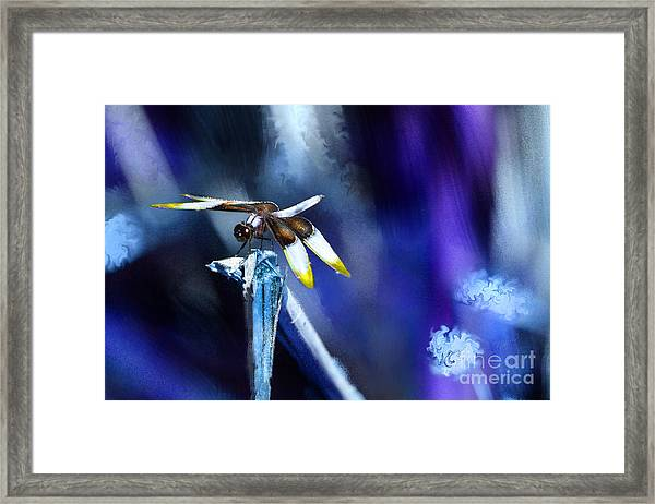 Dragonfly In The Blue Framed Print
