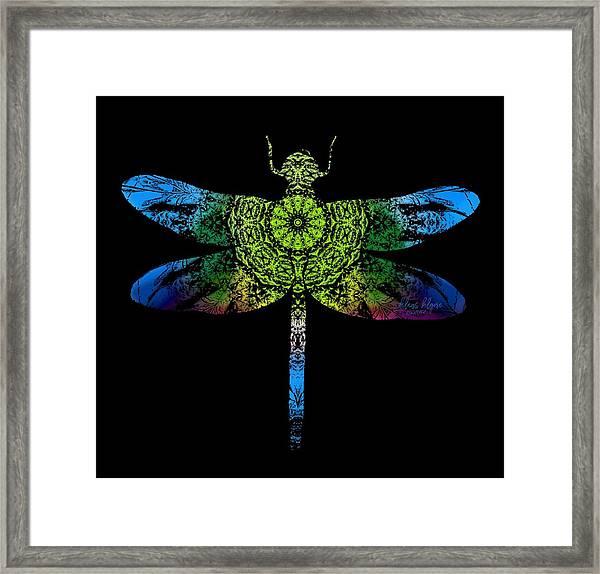 Dragonfly Kaleidoscope Framed Print