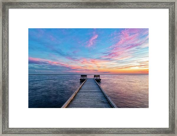 Drawn To Beauty Framed Print