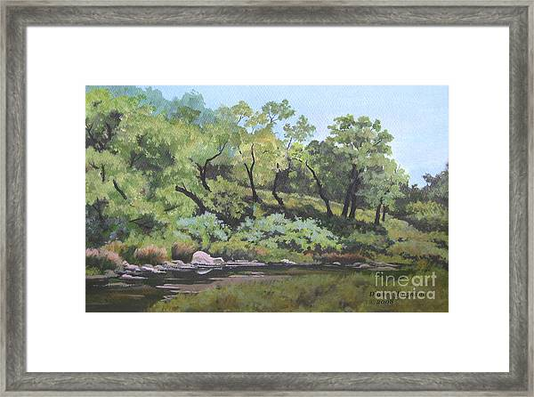 Dreaming By The Creek Framed Print