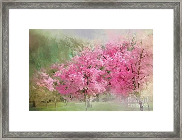 Dreaming Of Spring Framed Print