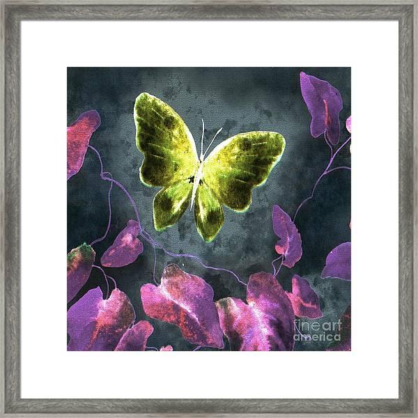 Dreams Of Butterflies Framed Print