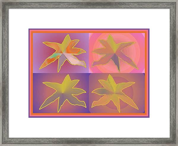 Dreamtime Starbirds Framed Print