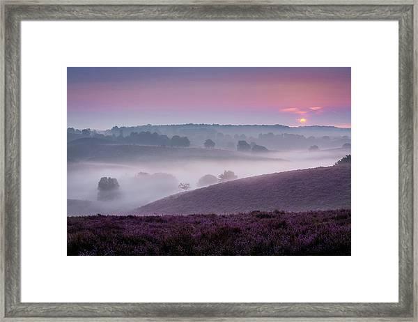 Dreamy Morning Framed Print