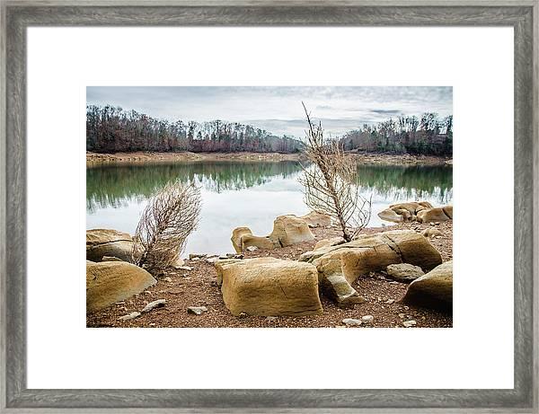 Dried Shrubs At Cherokee Reservoir Framed Print
