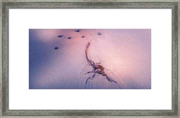 Drifted Framed Print