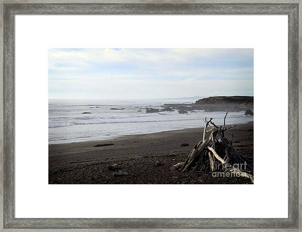 Driftwood And Moonstone Beach Framed Print