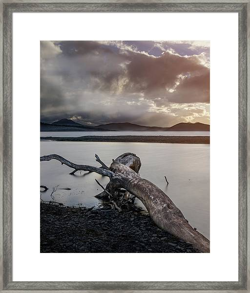 Driftwood At The End Of The World Framed Print