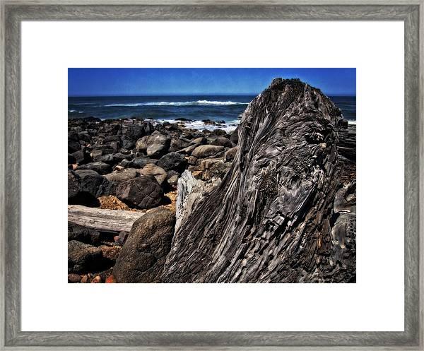 Driftwood Rocks Water Framed Print