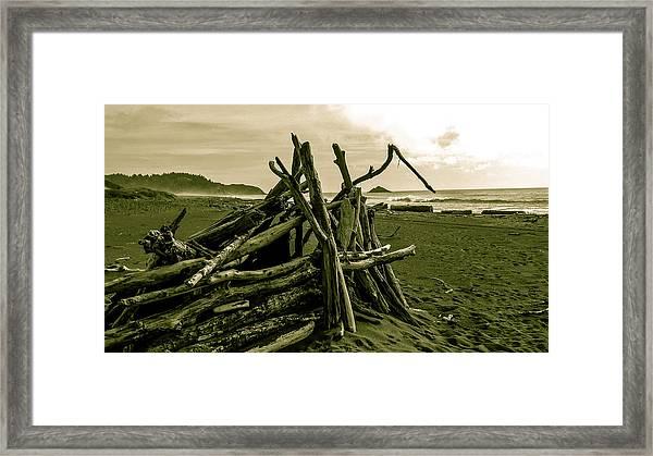 Driftwood Shelter Framed Print