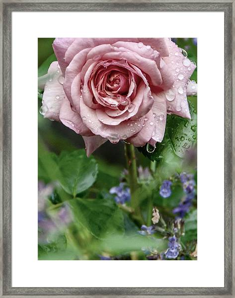 Drink Framed Print