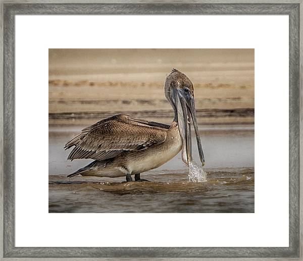 Dropping Water Framed Print